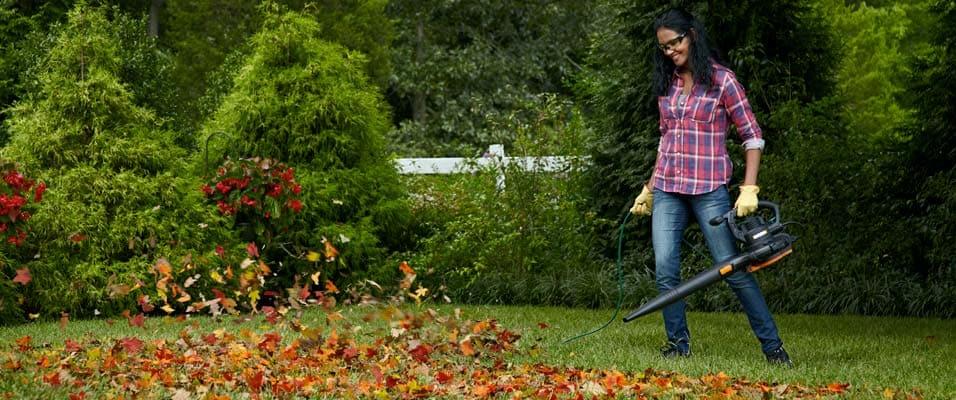 Choosing The Right Leaf Blower