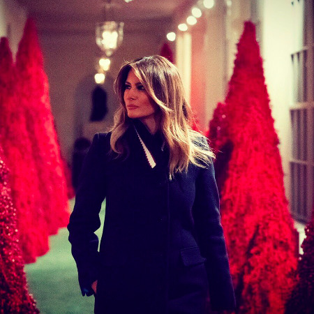 Not Everybody Likes Melania Trump's White House Christmas Decoration