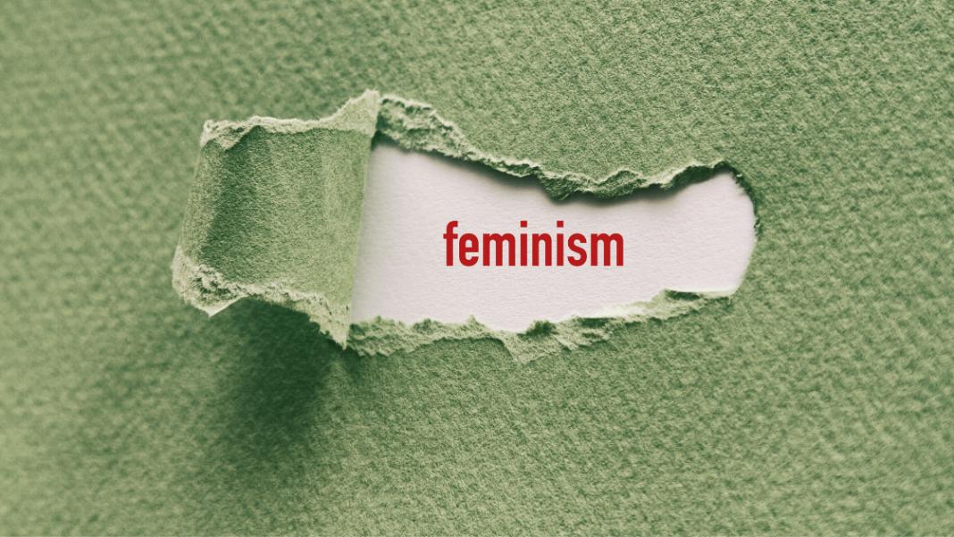 feminism vs humanism